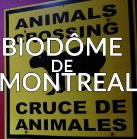 Détour du monde – biodome