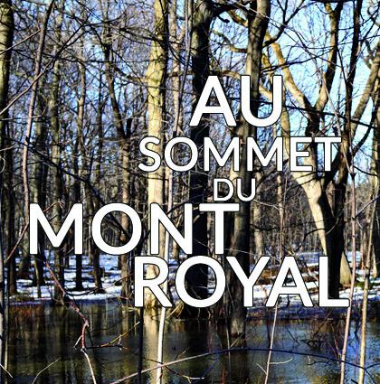 Détour du monde – mont royal