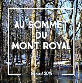 detour du monde blog – sommet mont royal